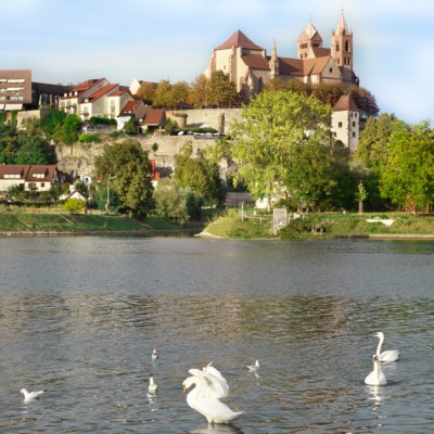 view of river and breisach cathedral