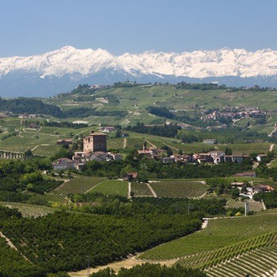 The UNESCO recognised Langhe hills