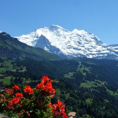 Jungfrau Peaks & Glaciers Walk