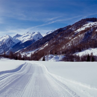 Cross Country Skiing Trails