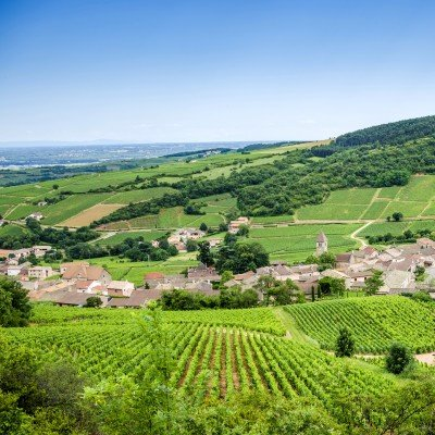 Gastronomic Burgundy Cycling - Short Break