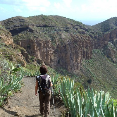 Strolling down into the Bandama Caldera on a cactus-lined path