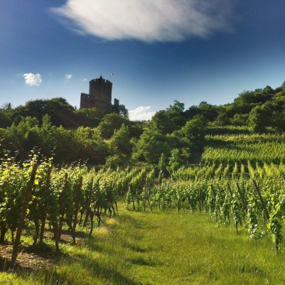 Chateau Kaysersberg