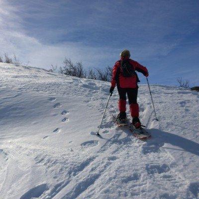 Snowshoeing in Geilo