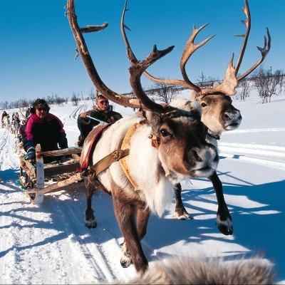 Geilo Winter Activity