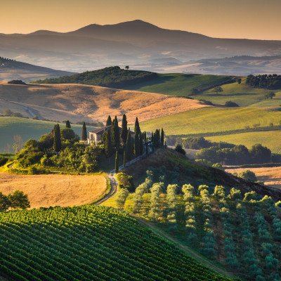 A Taste of Tuscany Walking