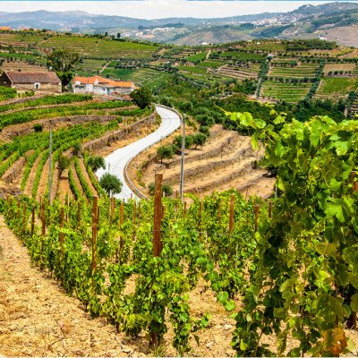 Portugal: Walking and Wine