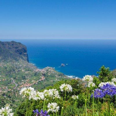 Marvels of Madeira Walk